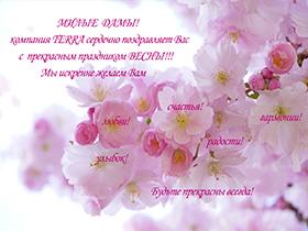 МИЛЫЕ ДАМЫ! Компания TERRA сердечно поздравляет Вас с прекрасным праздником ВЕСНЫ!
